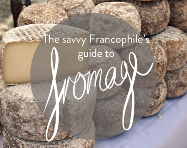 Hard cheese - guide to fromage